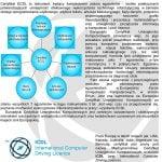 CIMA aktualizuje umiejętności w zakresie wiedzy, wymagania dotyczące certyfikacji